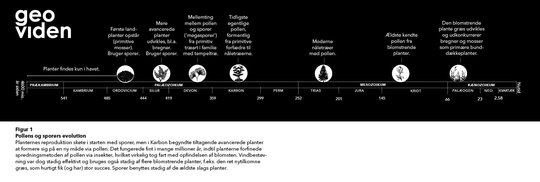 figur 1. pollen og sporers evolution